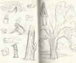 'Acorns' Squirrel and Tree Observational Sketches by Gemma Roberts